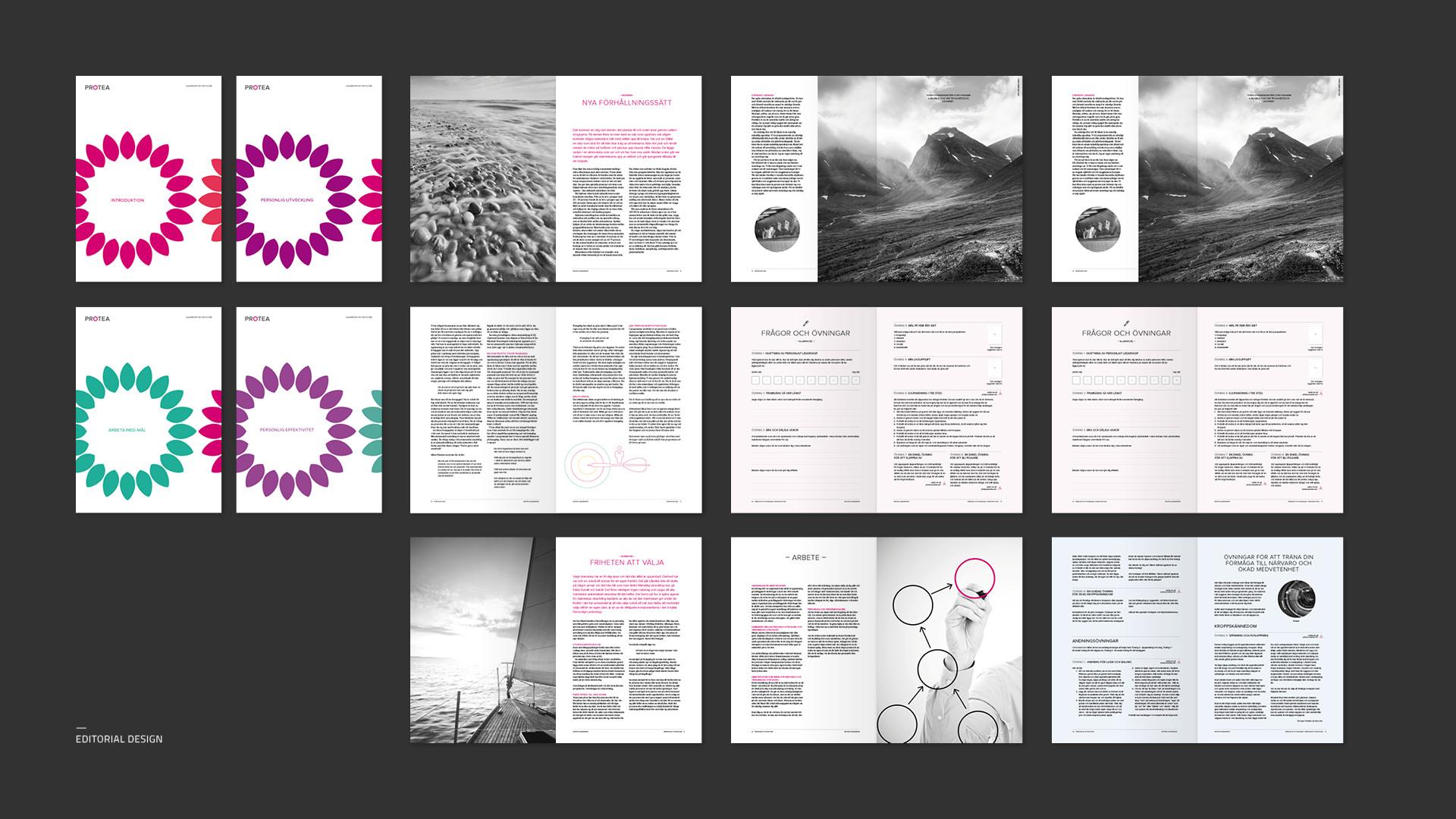 design-redaktionell-protea-2
