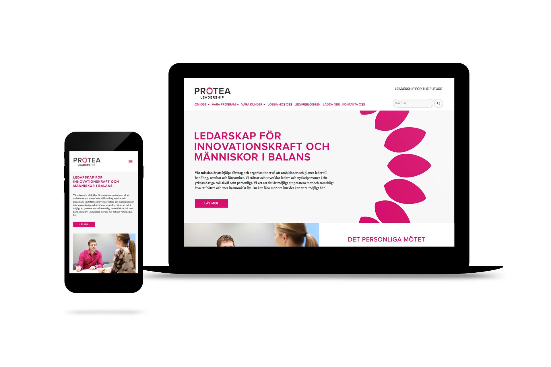 design-webb-protea-3