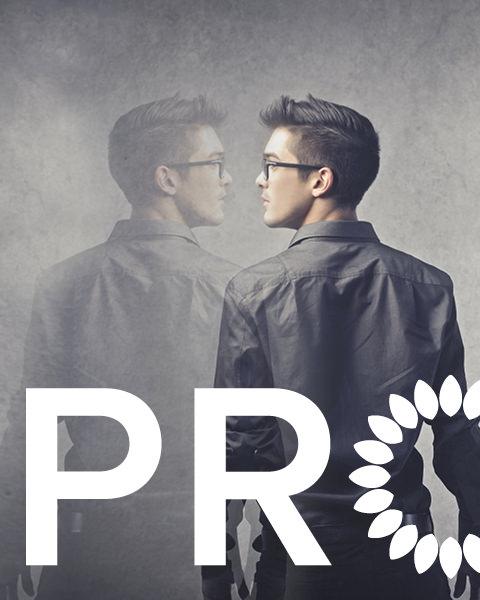 grafisk-profil-brand-identity-protea
